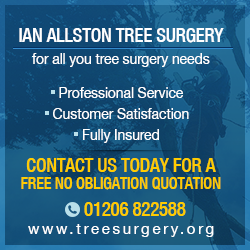 Colchester Tree Surgery